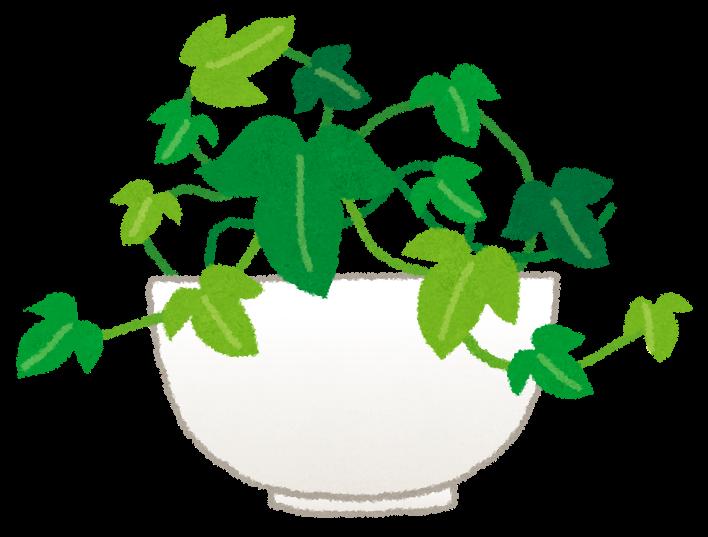 アイビーのイラスト観葉植物 かわいいフリー素材集 いらすとや