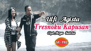 Lirik Lagu Tresnoku Kapusan (Dan Artinya) - Ulfi Agista / Arya Satria