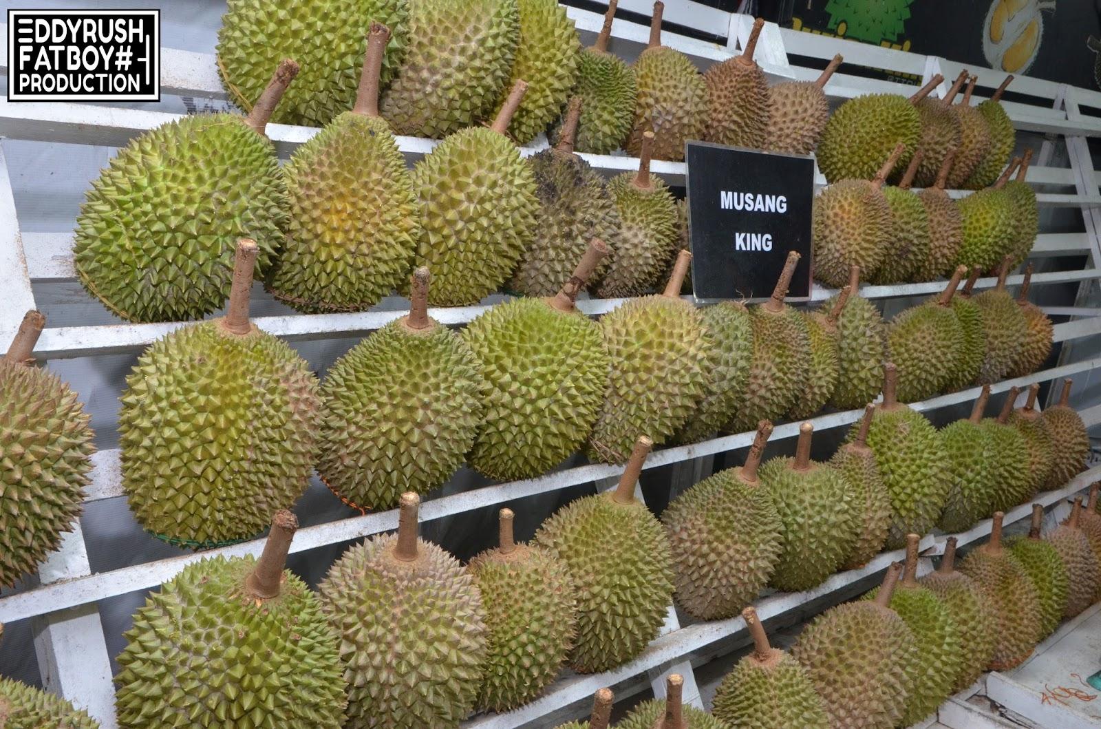 durian king ttdi. Black Bedroom Furniture Sets. Home Design Ideas