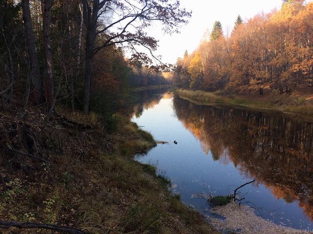 Река Керженец недалеко от  села Мериново
