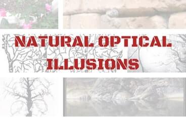 Natural Optical Illusions