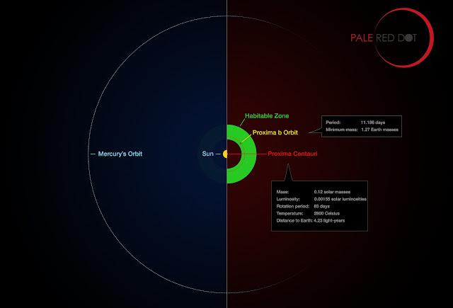 So sánh tương quan giữa quỹ đạo của Proxima b trong hệ Proxima Centauri và Sao Thủy trong hệ Mặt Trời. Khi hành tinh nằm trong vùng có khả năng tồn tại sự sống, nó sẽ có thể tồn tại nước lỏng. Credit: ESO/M. Kornmesser/G. Coleman.
