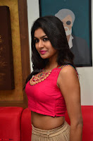 Akshita super cute Pink Choli at south indian thalis and filmy breakfast in Filmy Junction inaguration by Gopichand ~  Exclusive 039.JPG