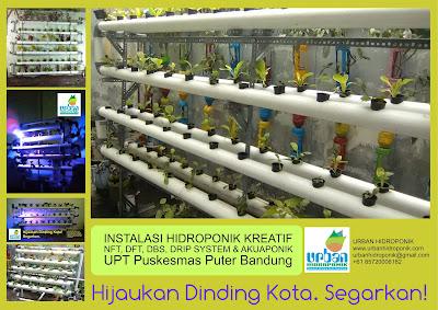 Urban Hidroponik, Urban Farming, Hidroponik Karawang, Hidroponik Ciampel