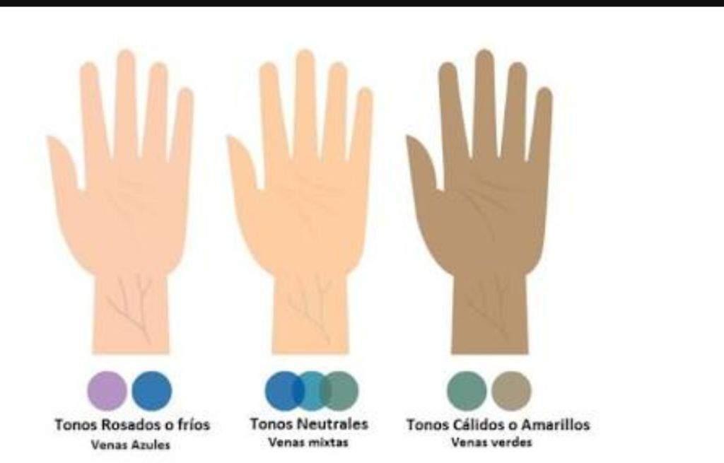 color de la vena para determinar el tono de la piel