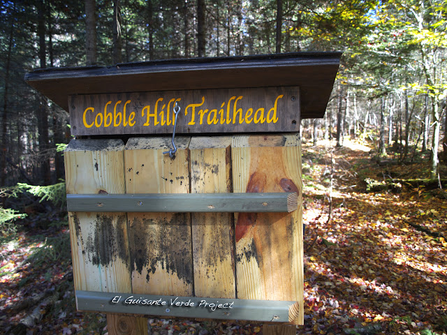 Cobble Hill Trailhead - Lake Placid, por El Guisante Verde Project