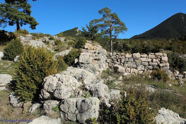 Poblat medieval de Roc de Palomera, Saldes, Alt Berguedà, arqueologia