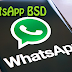 SAIU!! Novo WhatsApp BSD TOP
