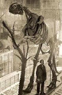 premiers dinosaures sur terre
