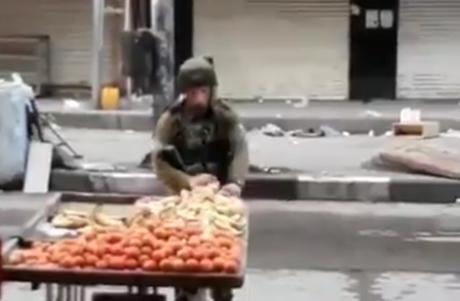 Memalukan, Tentara Israel Curi Apel Milik Warga Palestina