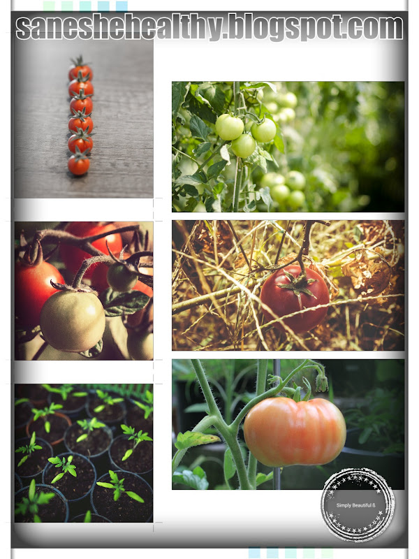 Tomatoes health benefits pic - 4