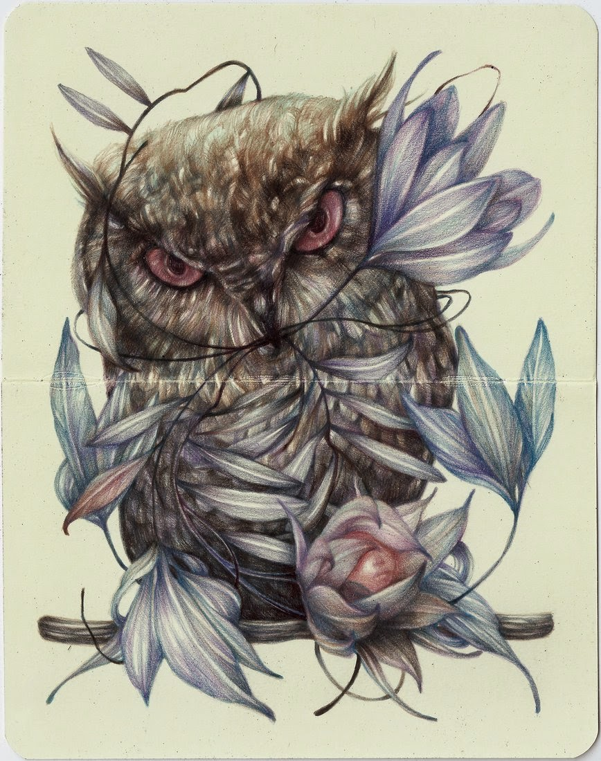 01-Marco-Mazzoni-Surreal-Animal-Drawings-www-designstack-co