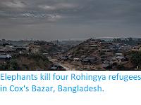 http://sciencythoughts.blogspot.co.uk/2017/10/elephants-kill-four-rohingya-refugees.html