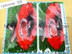 garskin, skin, skotlet, stiker, gambar tempel, handphone apple atau iphone 5S
