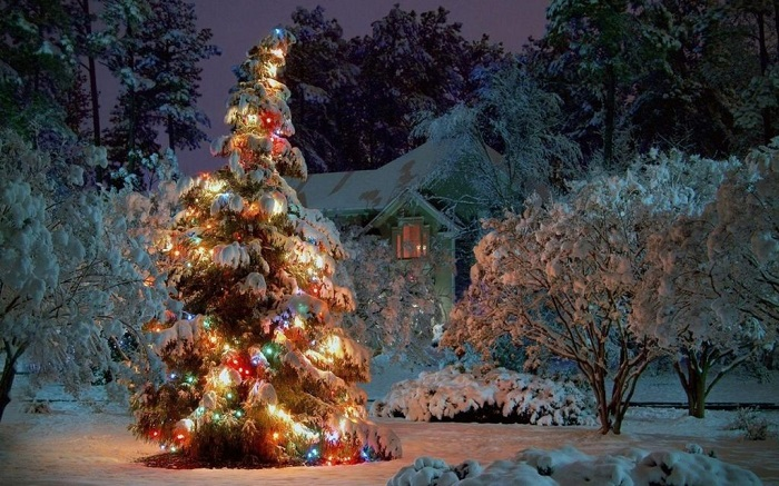 merry-christmas-wishes-images-pictures