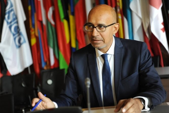 OSCE letter to Albanian Government, Désir: Negative Effect on Media Freedom