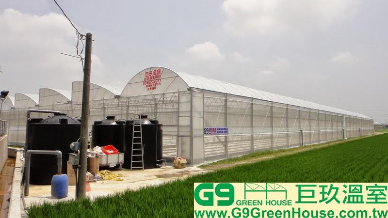 40.圓鋸鋼骨加強型溫室結構交由農民使用外觀