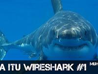 Apa Itu Wireshark Chapter #1 Kelas Online Wireshark