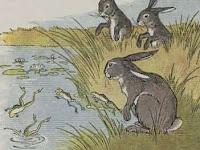 Dongeng Kelinci yang penakut dan Kodok