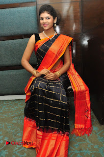 Model Sangeeta Kamath Pictures in Saree at Silk India Expo Curtain Raiser  0057.JPG