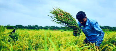 Bangladesh économie