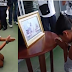 Thai police force woman to kneel before late king's photo for alleged insult(Photos)