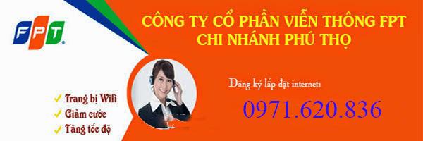 Lắp đặt internet fpt phường Gia Cẩm, Việt Trì
