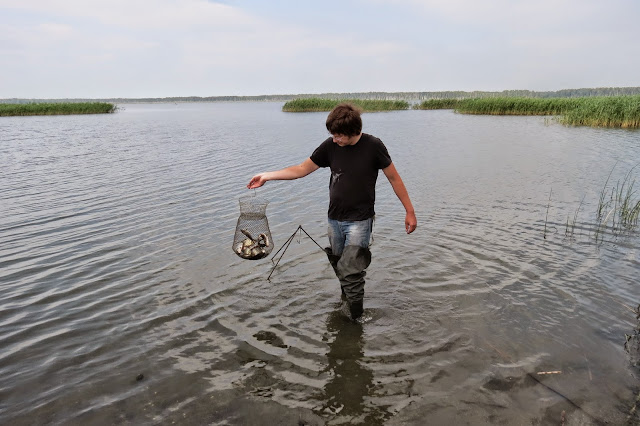 Достаём улов карпиков на озере Яу-Балык