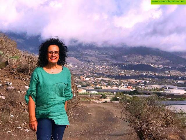 El Cabildo aprueba un convenio con Involcan para fortalecer la vigilancia sísmica-volcánica en La Palma