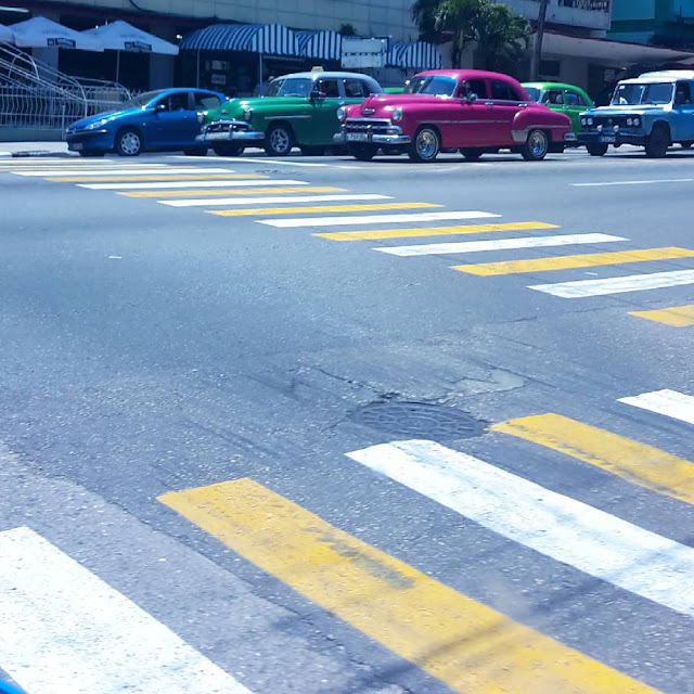 vintage taxis stop at zebra crossing