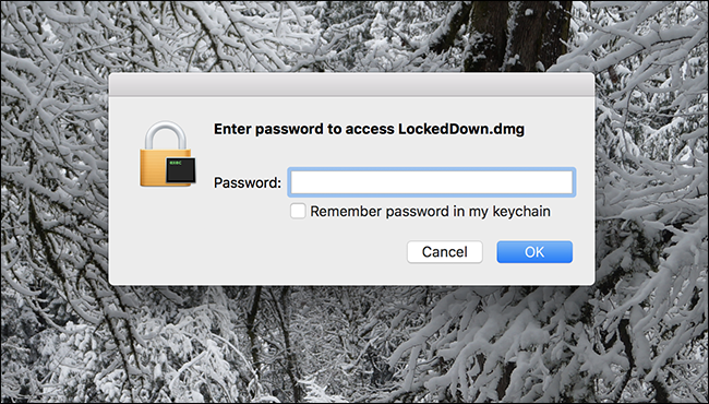 accedere all'immagine del disco fisso con la password