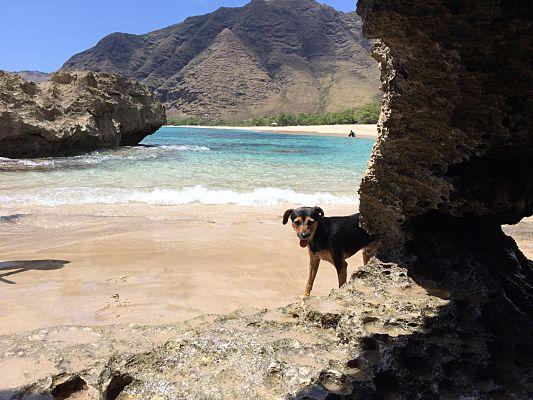 makua praia havai