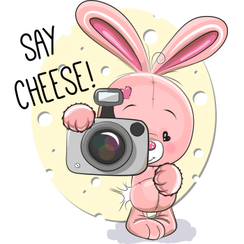Say Cheese Rabbit