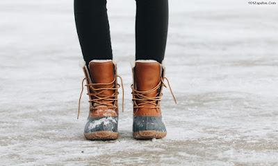 Botas de Mujer para el Frío