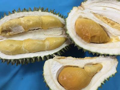 Pulut durian istimewa, musim durian