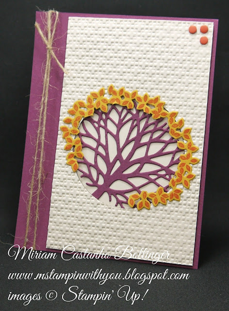 Miriam Castanho-Bollinger, #mstampinwithyou, stampin up, demonstrator, ppa, all occasions card, thoughtful branches bundle, big shot, square lattice tief, candy dots, su