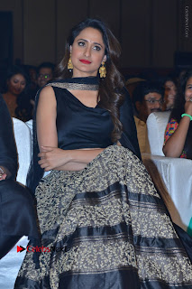Om Namo Venkatesaya Telugu Movie Audio Launch Event Stills  0074.JPG