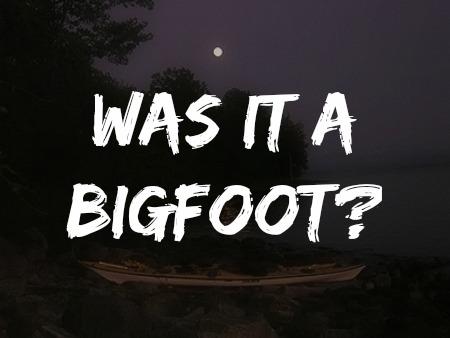 Was it a Bigfoot?