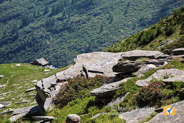 Tornando all'Alpe di Porcaresc