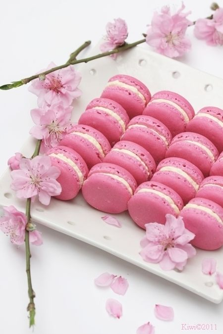 pink and peach macarons - photo #44