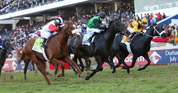 greyville horse racing results