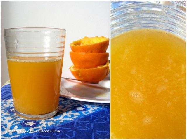 Jugo de naranja - Chacra Educativa Santa Lucía