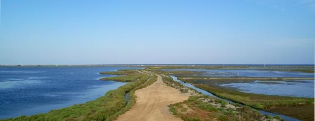 Paratge del Delta de l'Ebre