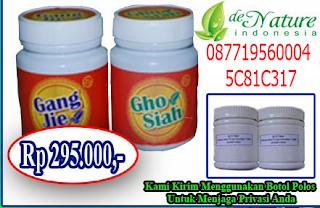 Obat Herbal Penyakit Sipilis
