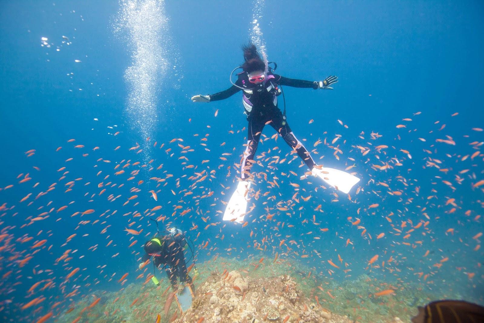 沖繩-沖繩潛水-沖繩浮潛-宮古群島-推薦-潛點-Okinawa-scuba-diving-snorkeling