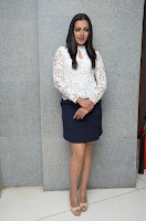 HeyAndhra Catherine Tresa at Sarrainodu Success Meet HeyAndhra.com