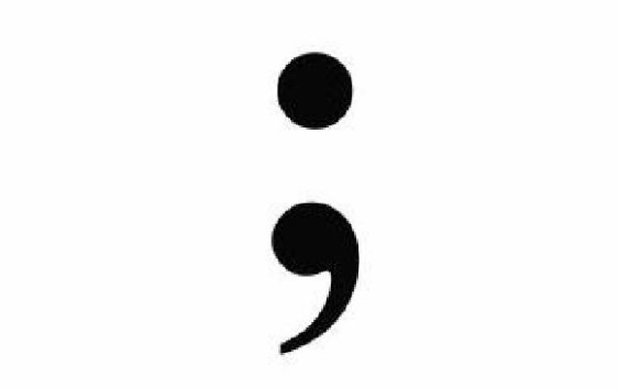 PIC: Semicolon sign
