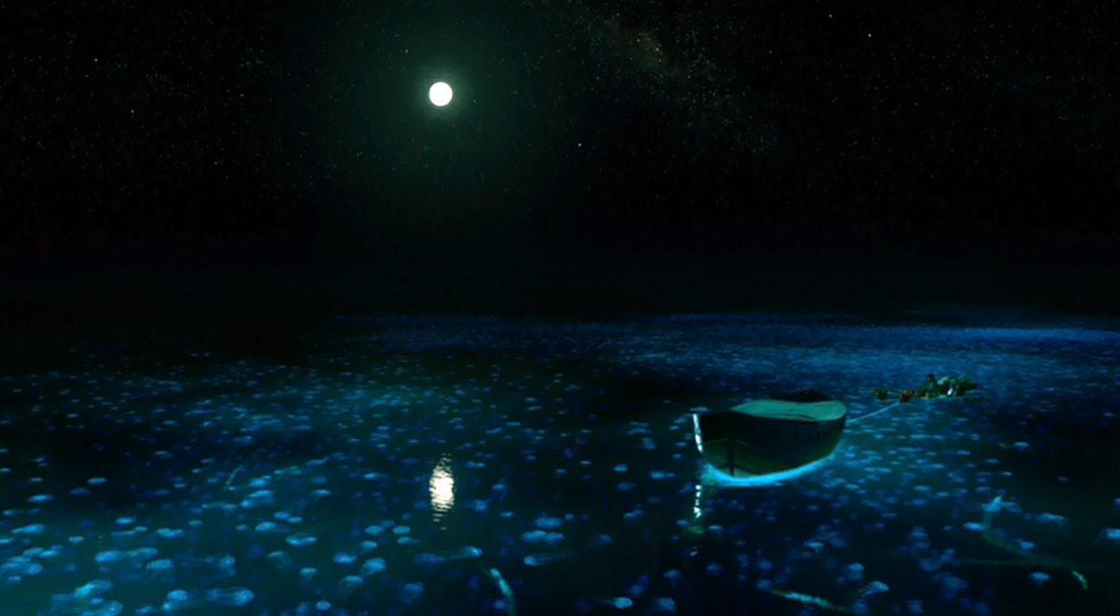 film review feast review life of pi 2012 visually stunning though it is life of pi features a bit too much of this
