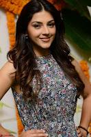Actress Mehreen Kaur Latest 2017 Po Stills3 ~  Exclusive Celebrities Galleries.jpg