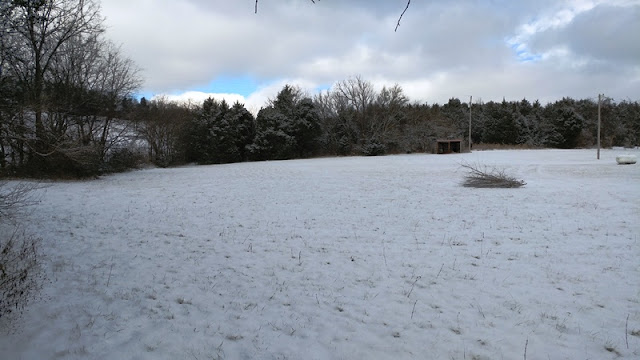 landscape on snow day nature walk